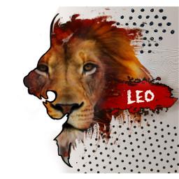 freetoedit leo lion sun zodiacsigns