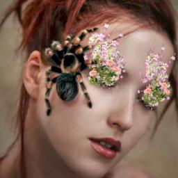 ecflowereyes flowereyes