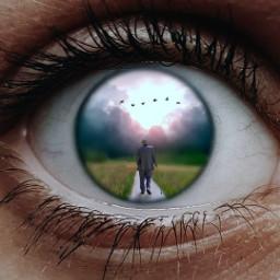 freetoedit eyephotography eye eyeart madewithpicsart