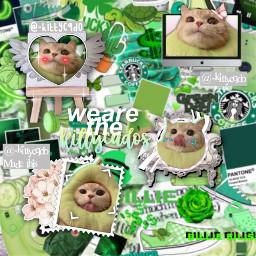 kittycado kittycados edit complex kittycadofan freetoedit