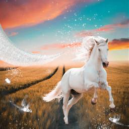 freetoedit creative madewithpicsart interesting picsart hourse magic beauty fantasy sky remixit remixed