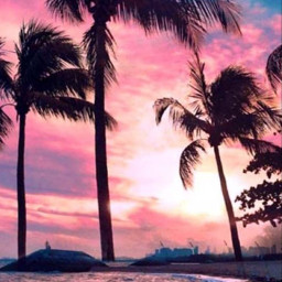 beach sunset water strand happyday