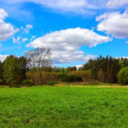 freetoedit meadow landscape forest