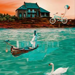 freetoedit myedit water swan hoise