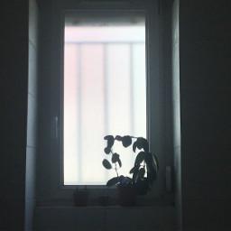 lightaestheyic aesthetic window aestheticwindow windowaesthetic