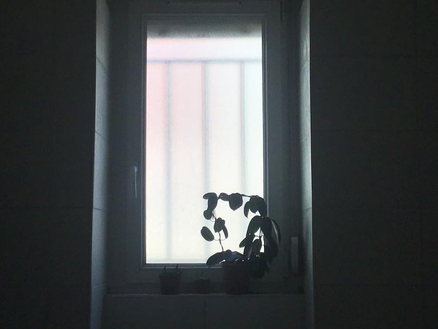 #lightaestheyic #aesthetic #window #aestheticwindow #windowaesthetic