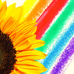 freetoedit rainbowmagiceffect sunlight sunflower