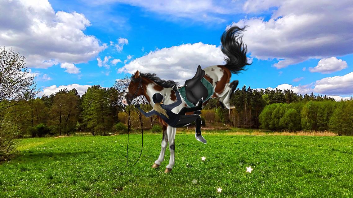 Ugh😒 I fell today😒😡 And i broke my leg so i dont upload like week😒 hate you Bronze!😞😡😡😒   ~Alma  #fall #fail #Bronze #brokenleg #ugh #ridingishard #boring #picsart #week  #freetoedit