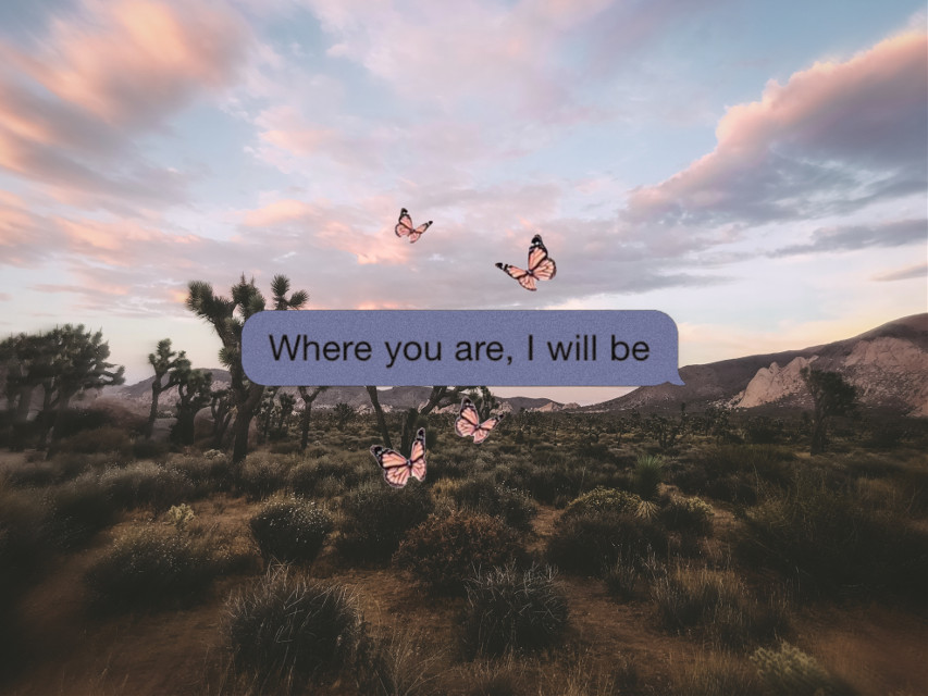 #freetoedit #quote #iphone #aesthetic #wallpaper