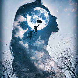 freetoedit doubleexposure silhouettes fantasy surreal