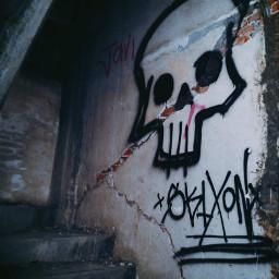 birdbox abandoned old decay grunge