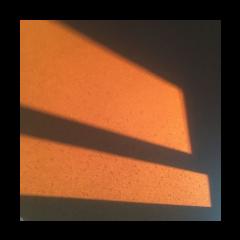 freetoedit atardecer goldenhour selfie tumblr