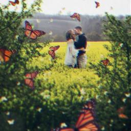 freetoedit couple butterflys picsarteffects madewithpicsart