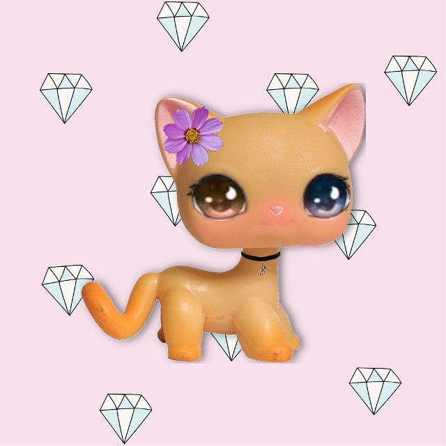 Here is now to make lpscutie7 origanal stickers or for profiles #lps #freetoedit #lpsedits #lpsshorthaircat #lpslove