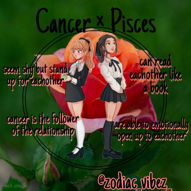 #freetoedit #zodiac #zodiacs #starsign #starsigns #birthday #astrology #cancer #pisces #friendship