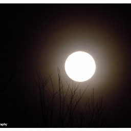 freetoedit followme follow4follow moon moonlight