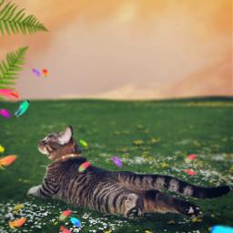 freetoedit cat grass magicbrush sticker