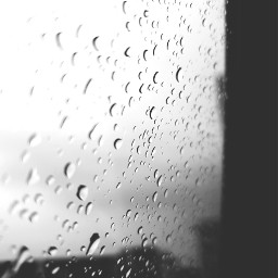 freetoedit photography rainyday windowview raindrops