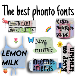 niche nichememe nicheclothes phonto fonts freetoedit