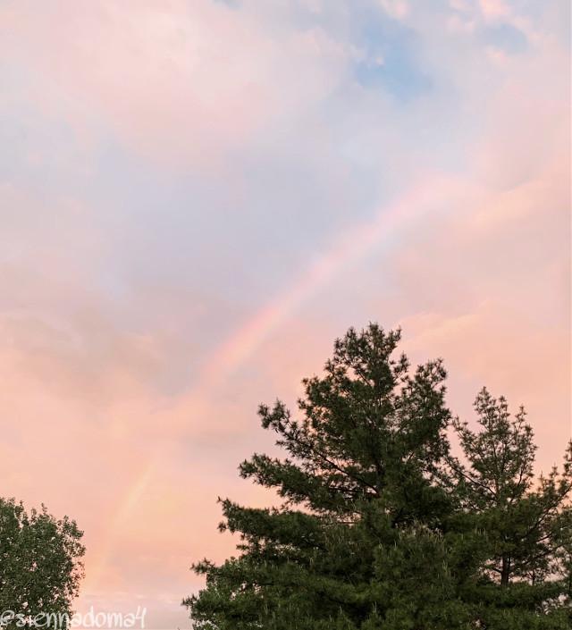 🇺🇸: The sky last night, I could not get over how pretty it was!   🇪🇸: El cielo de anoche, no pude superar lo bonito que era!   🇷🇺: небо прошлой ночью было так красиво! 🇵🇱: niebo zeszłej nocy, było takie piękne!  🇩🇪: Der Himmel letzte Nacht war so schön!   Tags: 😉  @nastiya367  @dilara_2210 / @the_lil_honey  @thats_mali / @just_mali_  @gweni_120208 / @gweni_1202   @artist_noor (HAPPY BIRTHDAY!!!!!!) @rachelvbsb88  @jennaulin  @xxjxst_leaxx  @aggie2_0  @ruyacenik_02  @bffs_tumblr  :)   My second acct (me): @just_sienna   #sky #rainbow #night #sunset #ночи #minnesota #minneapolis    Have a great day/night! 💗✨🦋✌🏻  #freetoedit