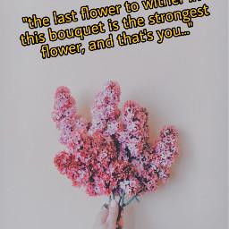 freetoedit flower flowerbouquet quote irclilacinmyhand