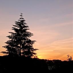 freetoedit photography myphotography horizon sunrise