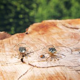 ladybug earrings interesting nature naturelover
