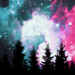freetoedit silhouette forest background galaxy