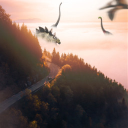 freetoedit surrealism surreal surrealworld manipulation