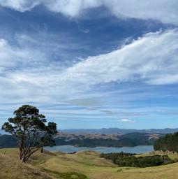 beach hills tree sky nz freetoedit