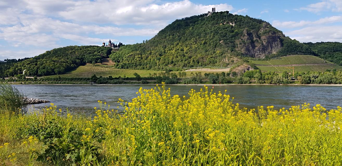 #freetoedit#Siebengebirge#travel#rhein#mountain#germany#myphotography#cloud#naturephotography#pclandscape