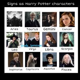 harrypotter horoscope zodiacs