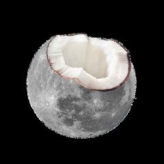 coconut moon freetoedit