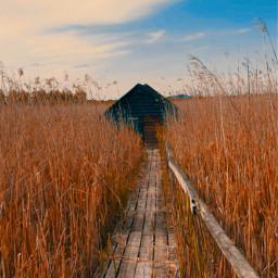 freetoedit landscapephotography skyandclouds woodhouse naturephotography