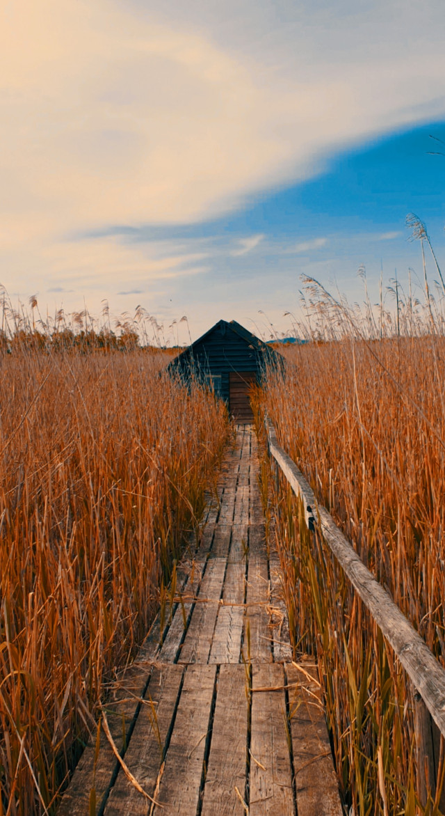 🧡  #freetoedit #landscapephotography #skyandclouds #woodhouse  #naturephotography #beautifulday #fields #picsarteffects