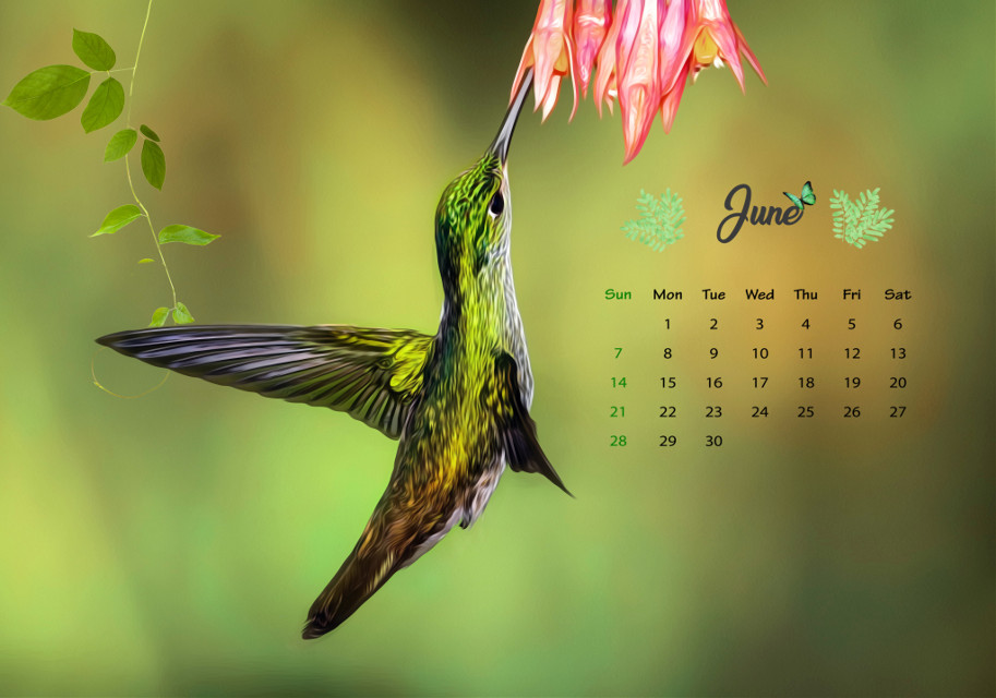 #june #calendar #calendar2020 #calendarmonth #junecalendar #challenge #picsartchallenge #calendarchallenge #junecalendarchallenge #plsvoteforme  june calendar 🦜🌱🌿 pls vote for me!🥺🥺🥺
