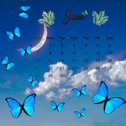 freetoedit butterfly butterflies blue bluebutterfly srcjunecalendar junecalendar #summertime