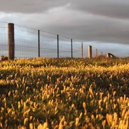 sunset goldenhour goldenhourphotography sunsetphotography photo