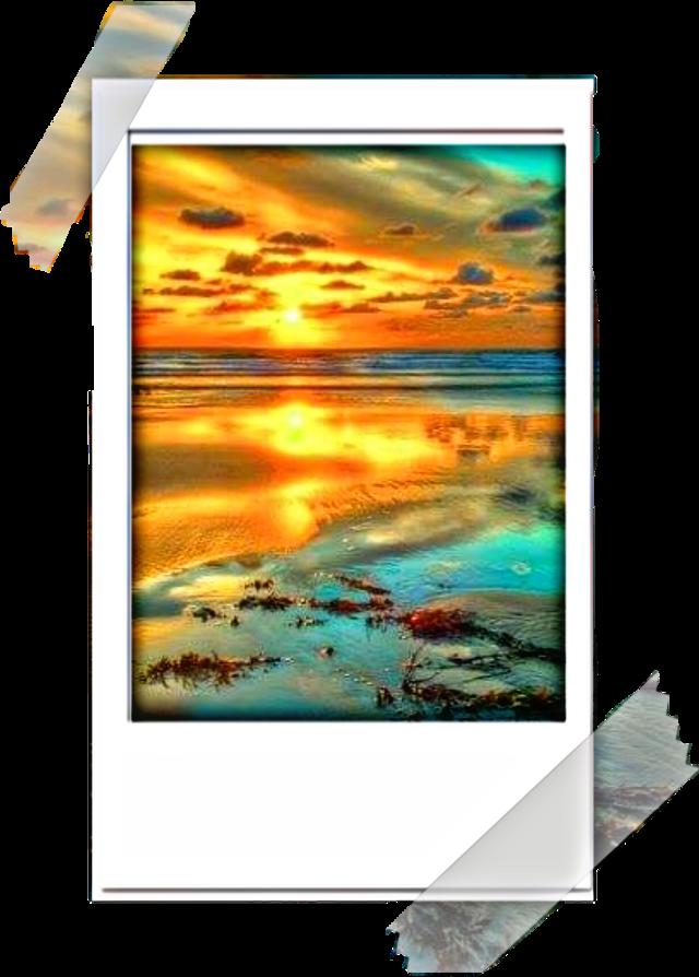 #freetoedit #beach #polaroid #tape #remixed #remixit