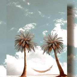 paradise freetoedit