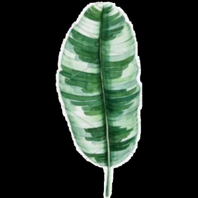 #freetoedit #green #flower