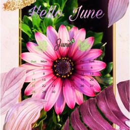freetoedit june summer flowers srcjunecalendar junecalendar #summertime