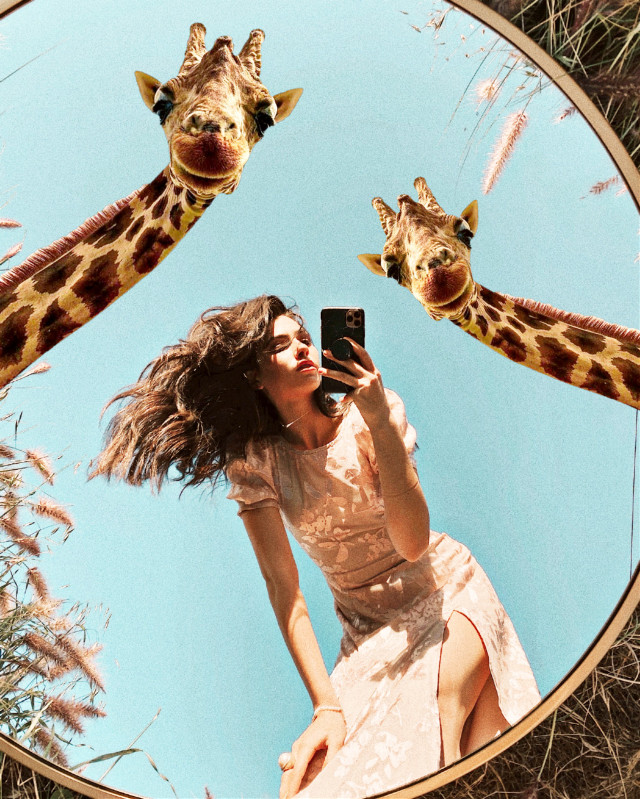 #freetoedit #surreal #mirrorselfie #outdoor #surreal #surrealism #surreality #giraffes #realistic  #ircgirlinamirror #girlinamirror #picsart @picsart