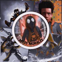freetoedit icon milesmorales marvel spidermanintothespiderverse