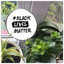 blacklivesmatter nature activism justice america freetoedit mirrormirror