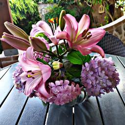 goodmorningworld flowers fullcolors lovely loveyourself freetoedit