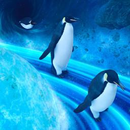 space saturn rings blackhole penguins