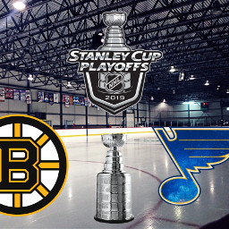 blueshockey bostonbruins stanleycupfinals freetoedit