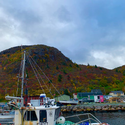 newfie newfoundland canada harbour boat pcmyhometown myhometown