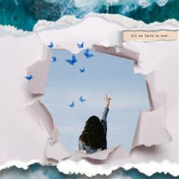 butterflies freetoedit freedom allweneedislove rcrippedpaper rippedpaper